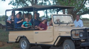 Makgoro Lodge Activities - Game Drive